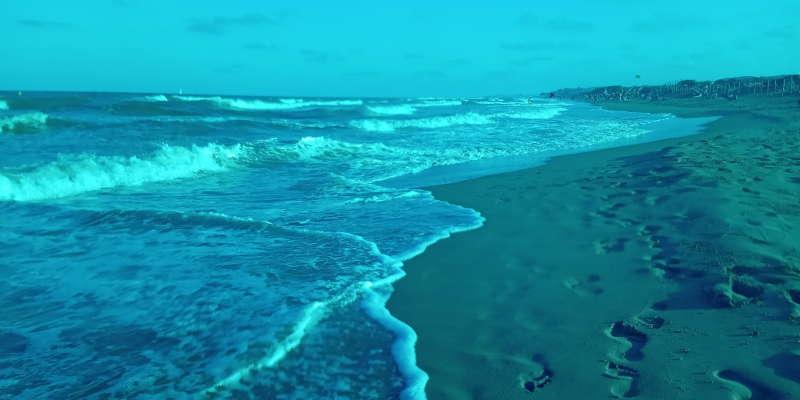 Playa de Guardamar del Segura.