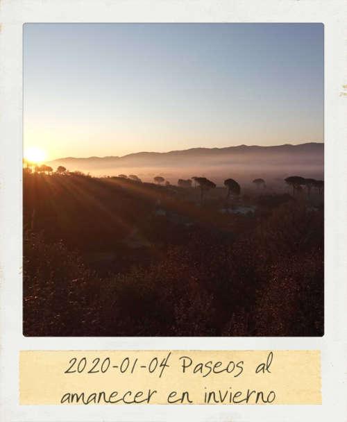 2020-01-04 Paseos al amanecer en inverno
